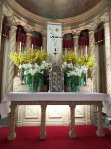 msd.20140420.tab.altar (Small)
