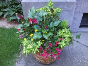 Planter at the west (right) side entrance of the church.