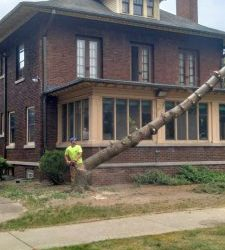 2021 Summer Projects Include Tree Removal